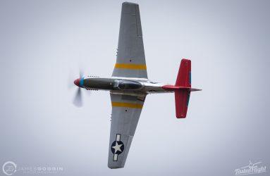 JG-17-95061.CR2