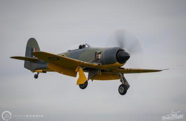 JG-17-100466.CR2